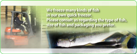 We freeze many kinds of fish in our own quick freezer. Please consult us regarding the type of fish, size of fish and packaging you prefer.