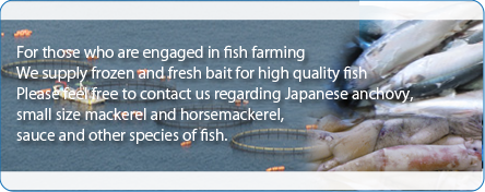 For those who are engaged in fish farming We supply frozen and fresh bait for high quality fish Please feel free to contact us regarding Japanese anchovy, small size mackerel and horsemackerel, sauce and other species of fish.